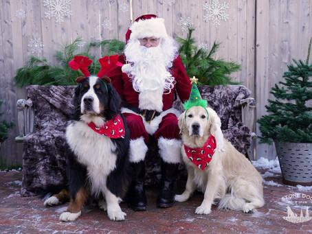 Santa visits Stone Dog Inn!