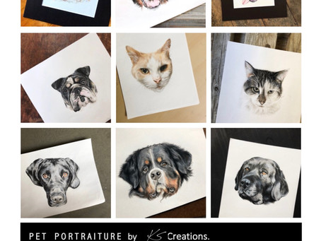 KS Creations Pet Portraiture- a great Holiday gift idea for Pet Parents!!