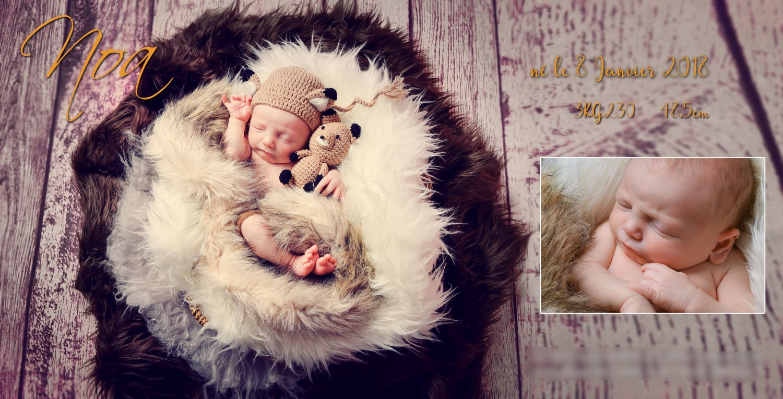 Faire part de naissance personnalisé