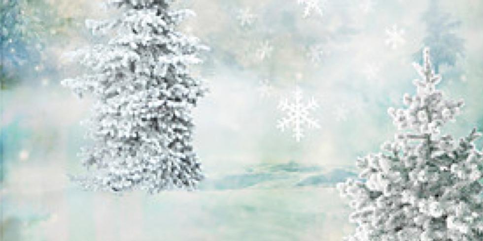 Mini séance Noel 2018