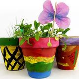 Pots&Butterfly.jpg