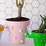 Cute painted living pots.jpg