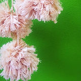 cotton pompoms_edited.jpg