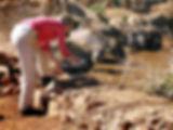 TV Produktion - Myanmar Making Of - Dreh mit Wasserbüffeln
