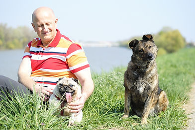 állatorvos Szeged
