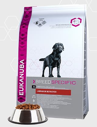 Eukanuba fajta specifikus-Labrador Retriever