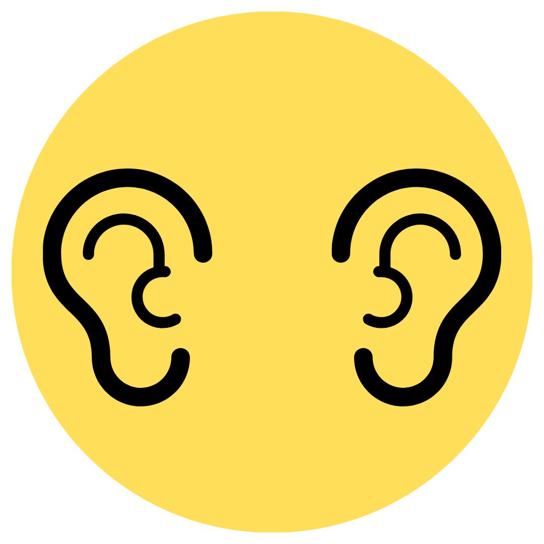 Ear Irrigation ( two ears)
