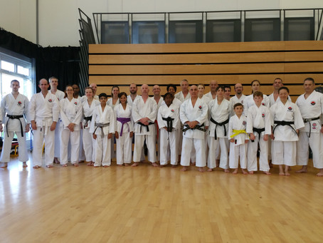 Angelo Sanna Sensei 6th Dan Referees Course & Training