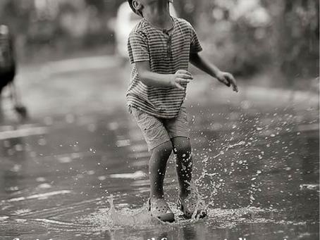 Et si nous cultivions nos petits bonheurs