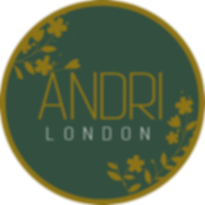 Andri London Logo_edited.png