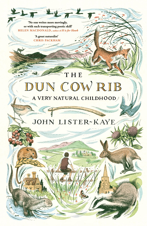 Dun Cow Rib
