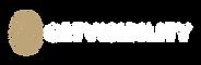 Getvisibility-Logotype-Negative-Hires-(S