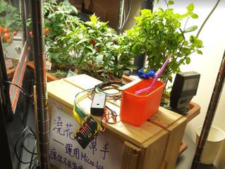 由小學至中學,再到興趣班都喜歡─自動淋花器
