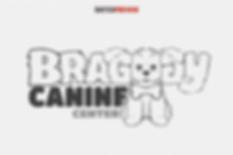 Braggy Bones Inital Concept