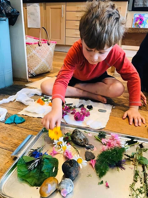 Art in Nature Camp - Zoom Camp