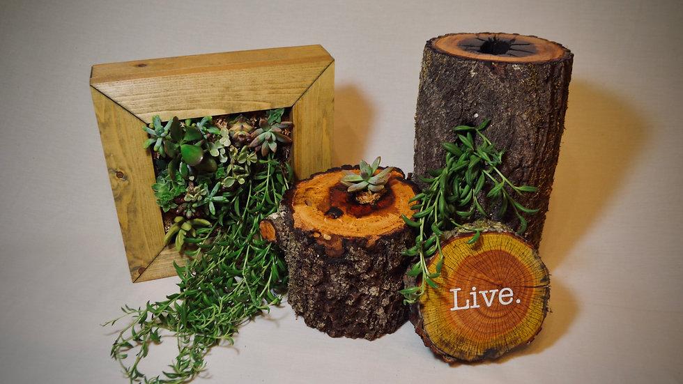 Natural Wood Planters
