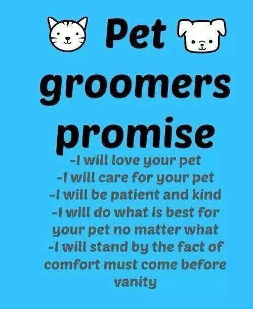 dog grooming packages