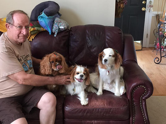 client and dogs