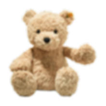 teddy%20bear_edited.png