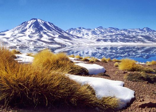 Lagunas Altiplanicas.JPG