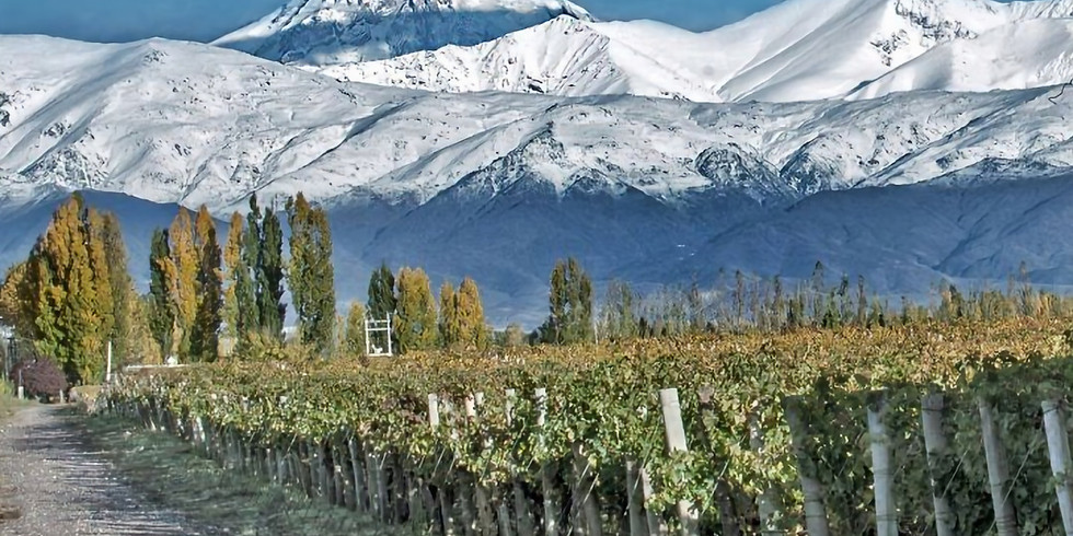 Wine Master Class - An Argentine experience
