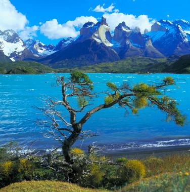 Lake Grey.jpg