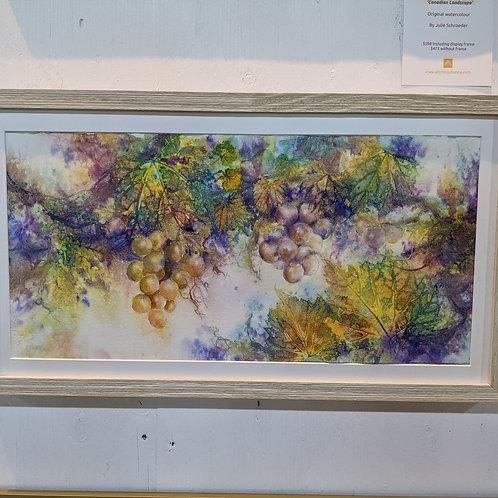 Grapes by Julie Schroeder
