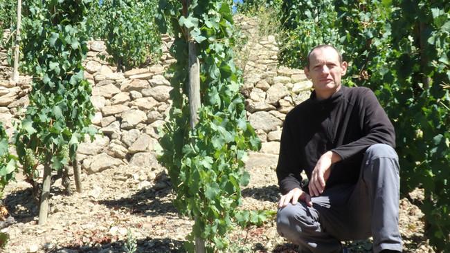 Xavier Mourier, du négoce à la vigne