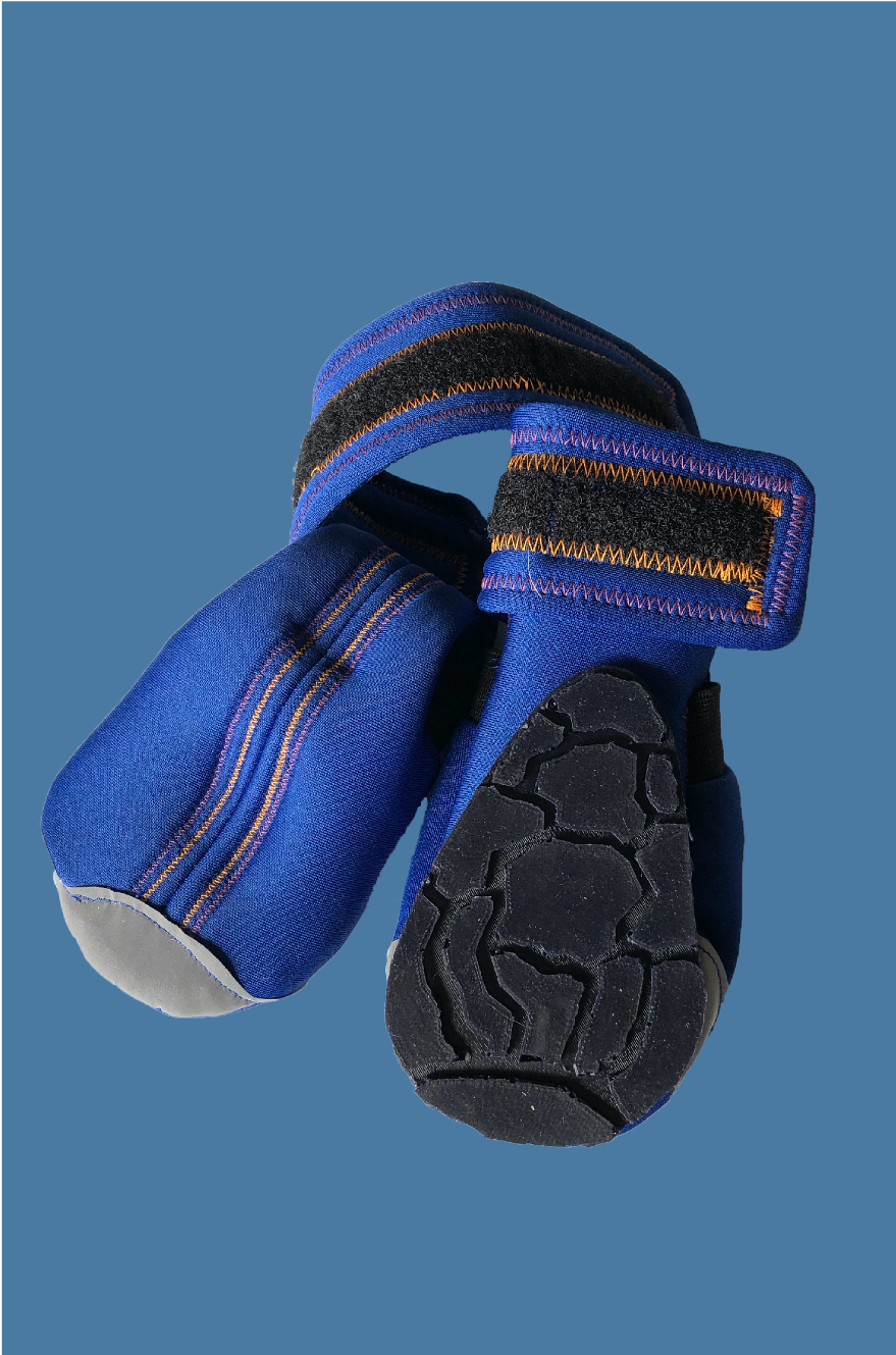 Astros Dog Shoes