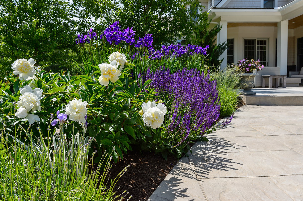 Indresano Corporation landscaping design, construction, maintenance – Estate Care, Lawn care