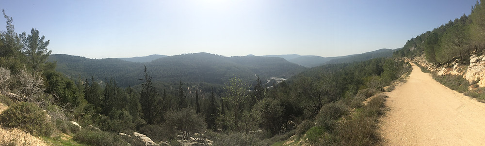 View From Mt Eitan