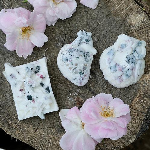 Magnolia + Peony Wax Melts (White) - Bloodstone, Rose