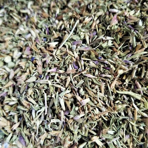 Organic Hyssop (Hyssopus officinalis)