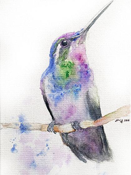 Hunmingbird