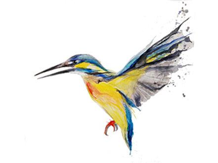 kingfisher10