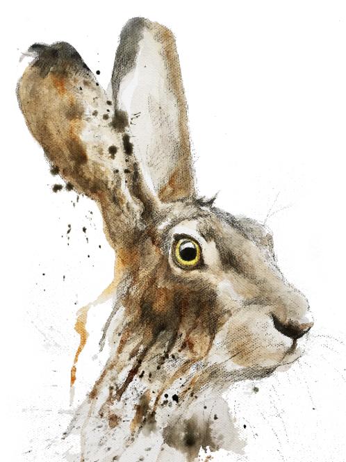 hare5