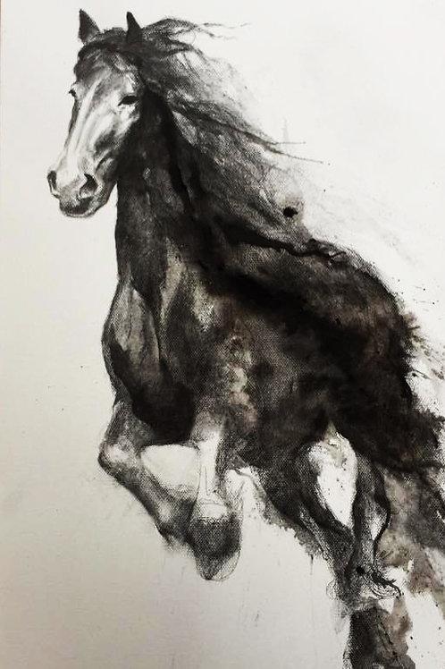 running black horse3