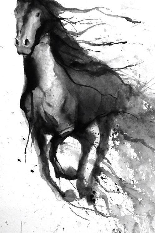 running black horse1