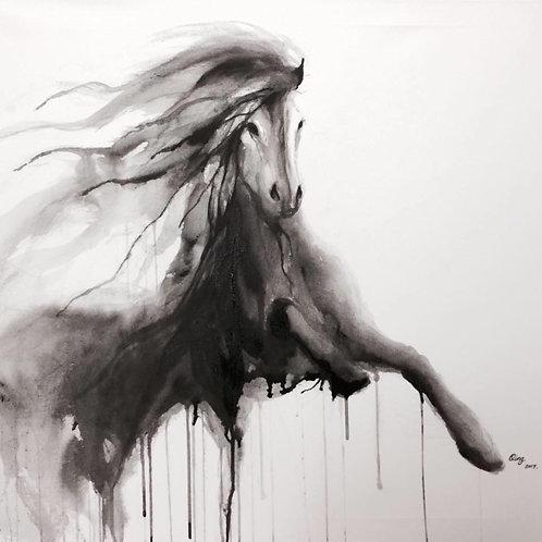 running black horse4