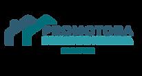 Logo Promotara BRISAS DE MOKANÁ-03.png