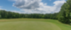 ChippingGreen-1.png