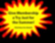 starburst-4.png