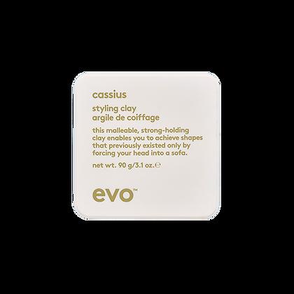 Evo -  Cassius