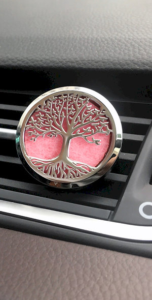Aromatherapy Car Diffuser Kit