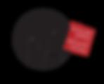 pA_logo_def2019_bucato_trasparnte.png