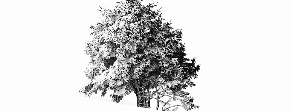 BLACK ON WHITE - Digital file