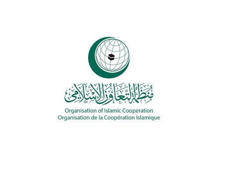 OIC denounces Houthi drones targeting Saudi Arabia