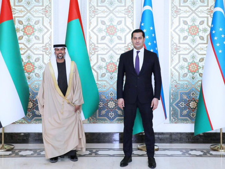 UAE President sends message to President of Uzbekistan on growing bilateral relations