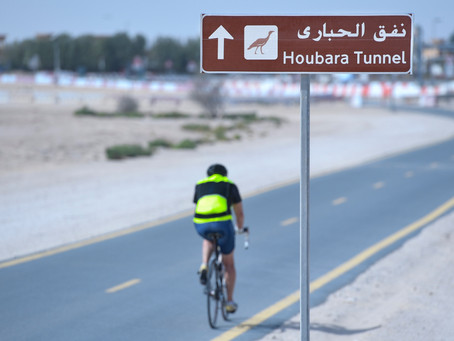 Under directives of Mohammed bin Rashid Cycling underpass at Seih Assalam as Houbara Tunnel