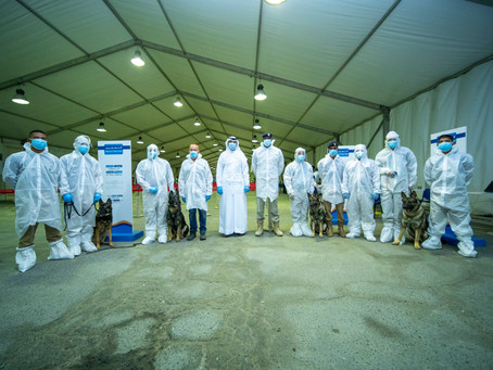 UAE's Federal Customs Authority, HCT use canines in world-first COVID-19 detection study